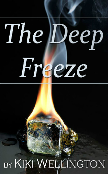 The Deep Freeze by Kiki Wellington book cover
