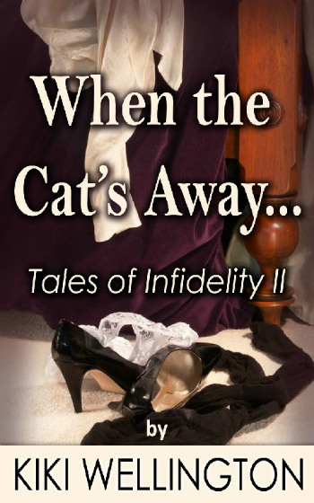 When the Cat's Away II by Kiki Wellington book cover